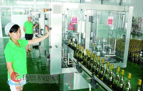 南丰蜜桔酒生产线 拷贝