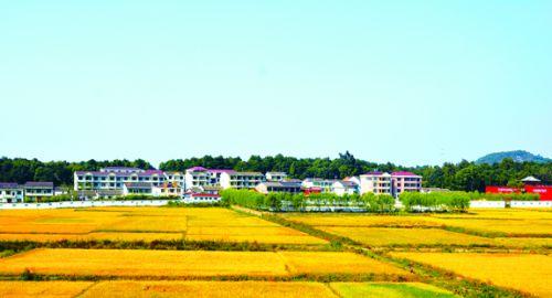 图7:生态秀美新农村