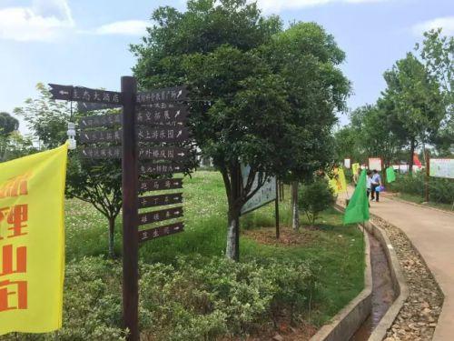 【权威发布】抚州市动物园开建啦!地址在