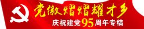 党徽熠熠耀才乡