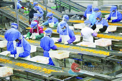 江西广雅食品有限公司现代化的果蔬罐头生产车间 拷贝
