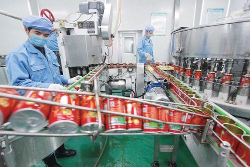 江西广莲珍食品荷叶茶生产线-