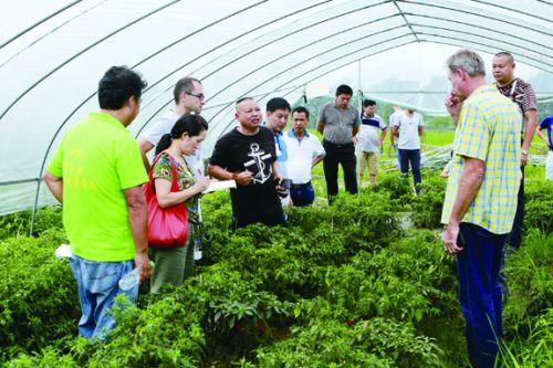 南城县麻姑山农业示范园