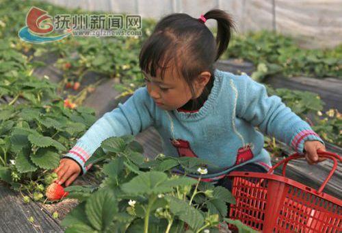 南城县农业旅游双增收