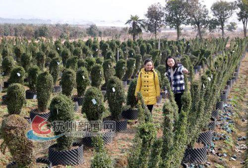 东乡:生态农业助农发绿色财