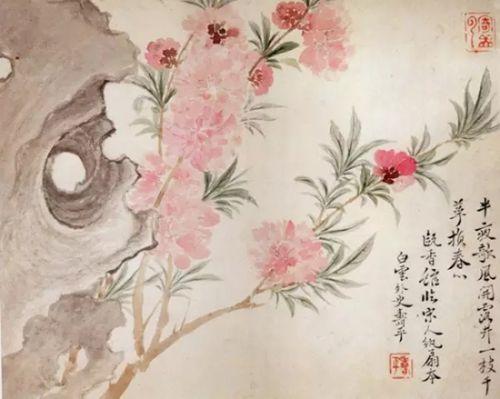 清 恽寿平《花卉》