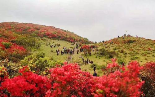 【暖新闻·江西2018】今日牙梳山上最美风景线,游客直呼:太给力!