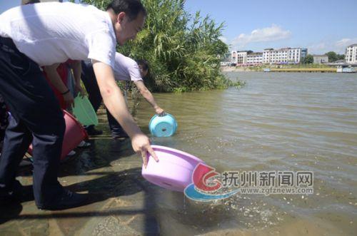增殖放流 改善水域环境