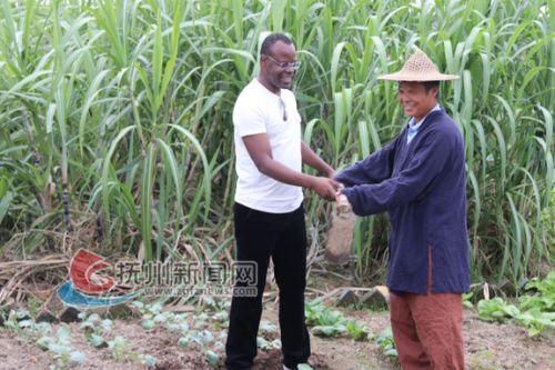 赞比亚驻华使馆代办杰弗里·班达在金溪竹桥体验耕种