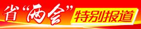 """2019省""""两会"""""""