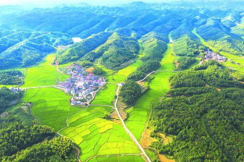 10、秀美的乡村——王庆华摄