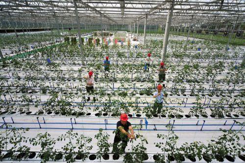 农业科技博览园
