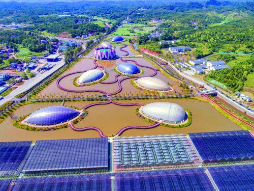 广昌县现代农业示范园鸟瞰