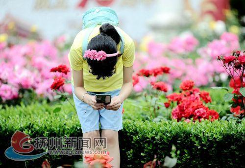 QQ图片20200503114023